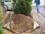 3.取り除いた土が予想以上でます。