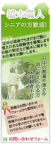 植木職人 シニアの方歓迎!