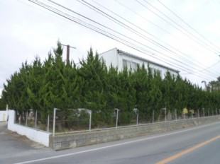 佐賀県三養基郡 事務所 植栽定期管理