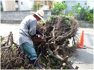 筑紫野市塔の原 伐採