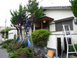 福岡市東区青葉 K様邸 伐採、剪定作業