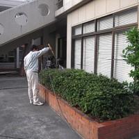 福岡市博多区 九州電気専門学校様 植栽定期管理