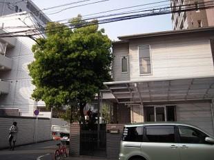 福岡市中央区高砂 K様邸 剪定