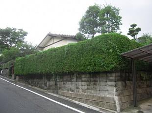 太宰府市五条 F様邸 造園工事-庭木の撤去-駐車場工事