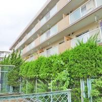 大野城市中央 Rマンション 定期植栽管理