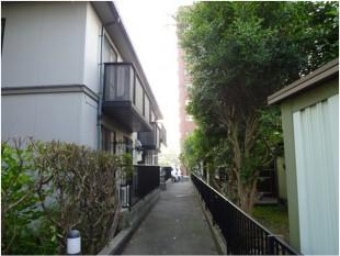 筑紫野市紫 アパート定期植栽管理