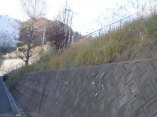 福岡市 団地 除草