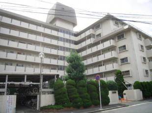 福岡市城南区 Fマンション 定期植栽管理