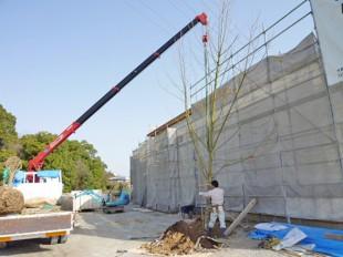 大野城市スイーツショップ 「バニラの実」様 庭園植栽工事