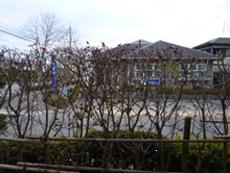 筑紫野市美しが丘南 造園工事