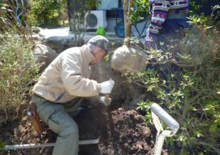 春日市小倉 N様邸 庭木の移植・植え込み工事