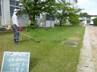 中庭草刈り
