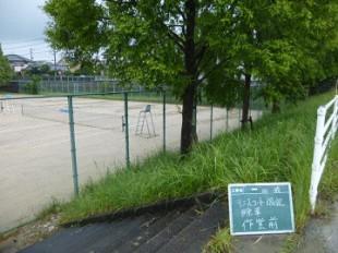 テニスコート周辺草刈り作業前