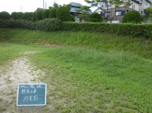 グラウンド法面草刈作業前