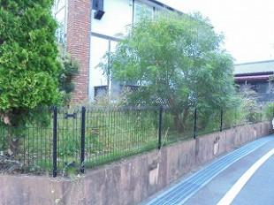 筑紫野市 剪定、草刈、外壁洗浄